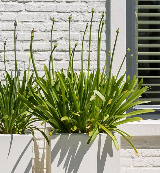 plantenbak wit